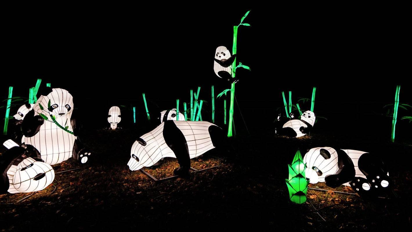 фестиваль китайских фонарей певческое поле
