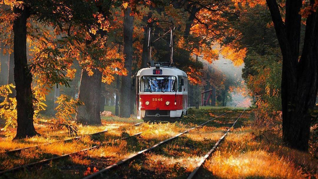 трамвай на подол
