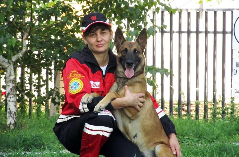 собаки, спасатели
